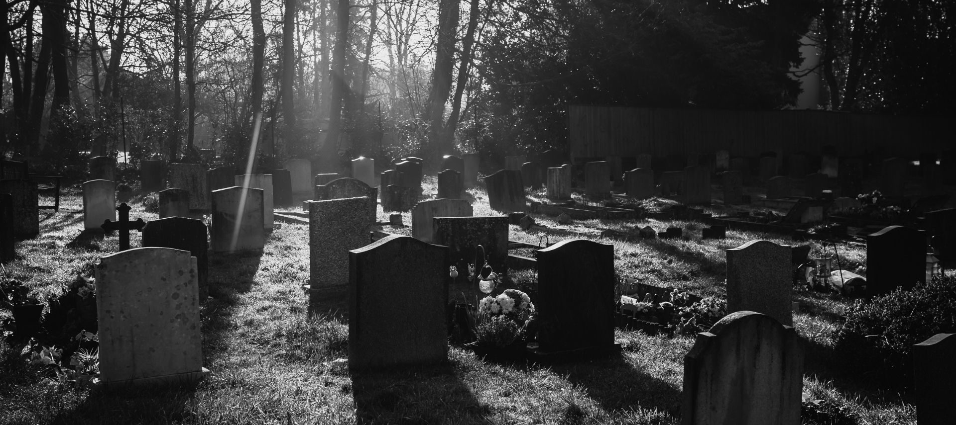 Black and white image of a cemetary with sun rays shining down