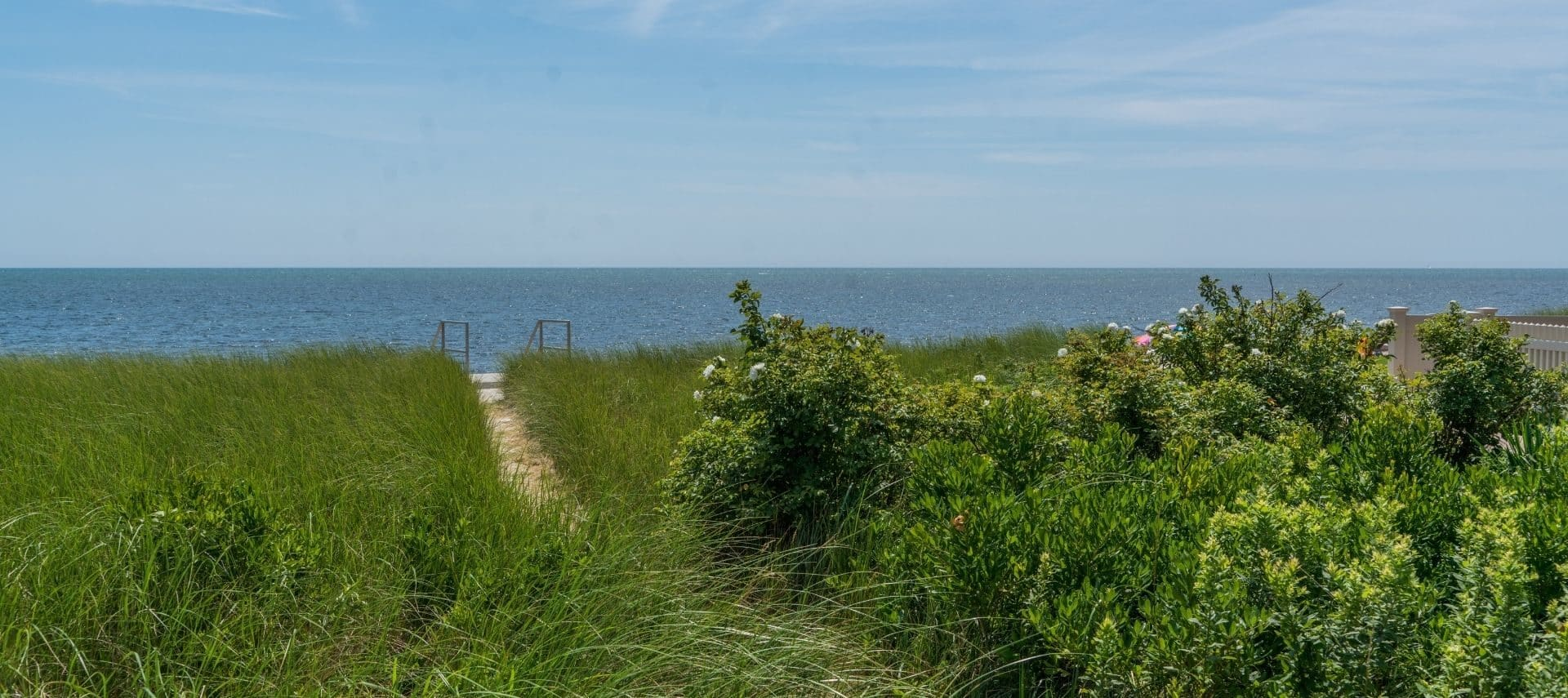 Grassy dunes against a blue backdrop of the Atlantic and the sky in Yarmouth MA