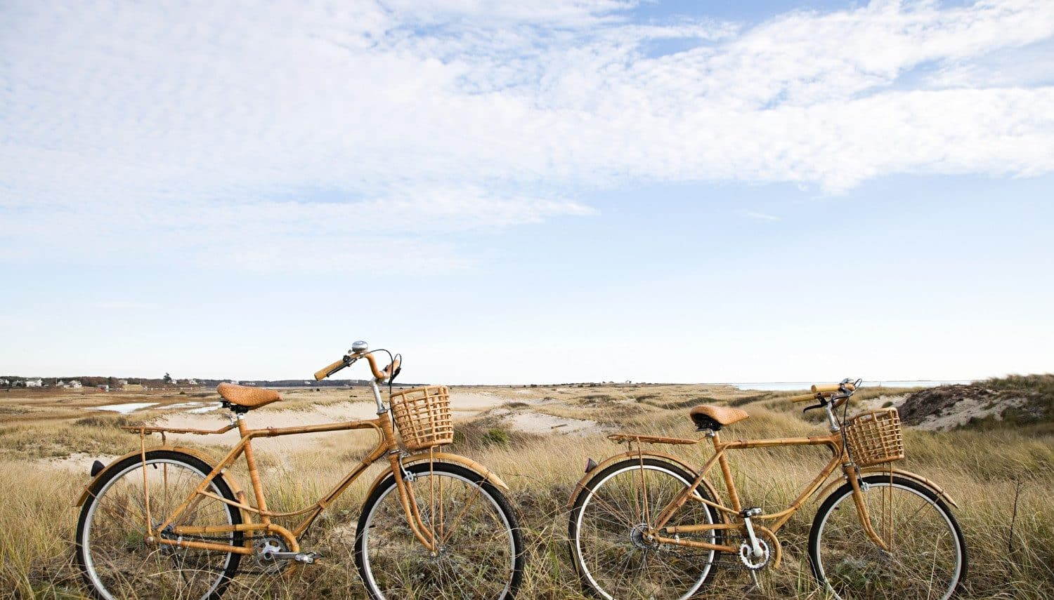 Two bicycles on the sand dunes on Cape Cod