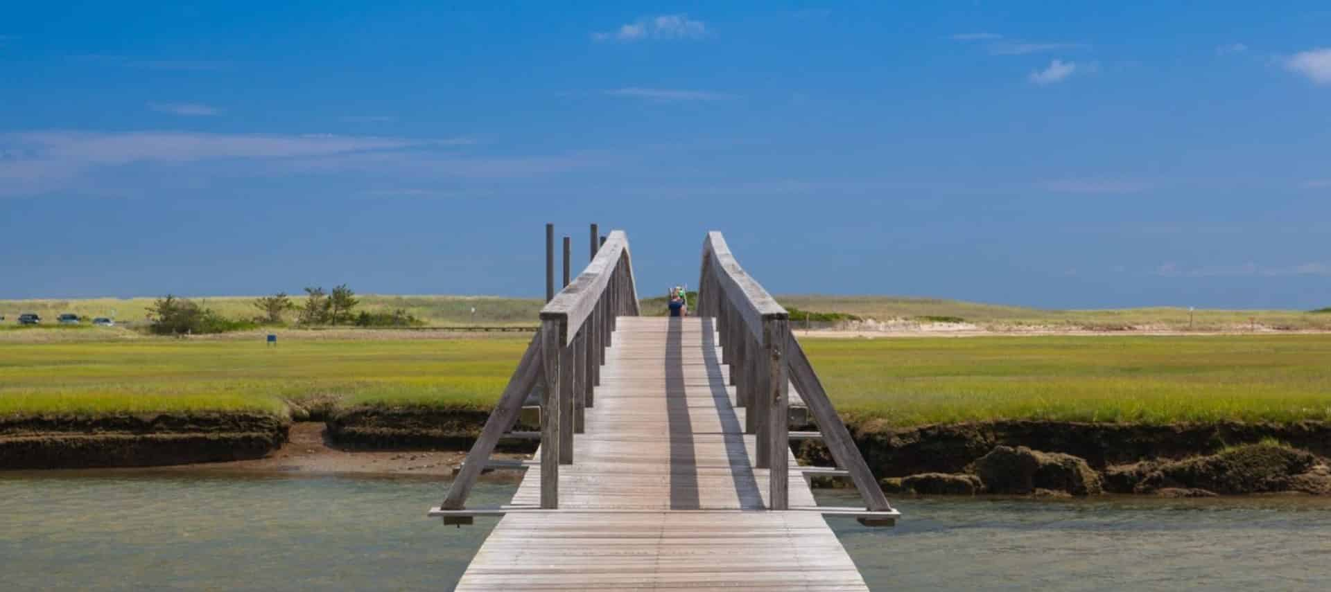 Long weathered wooden dock leading from parking area to the water surrounded by green grass