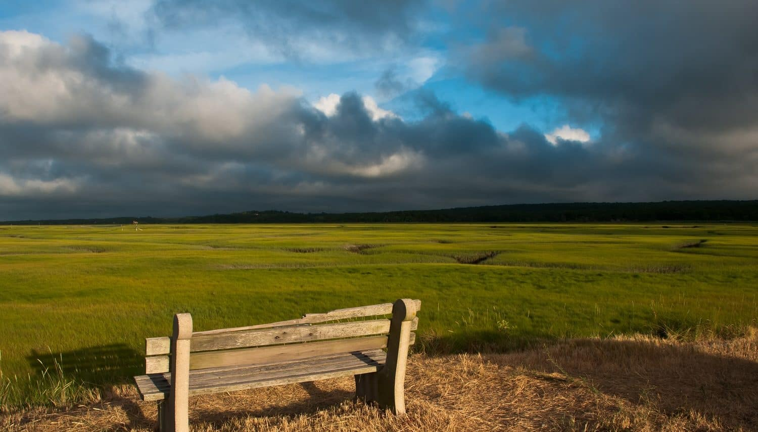 A bench in an open field in Dennis, MA